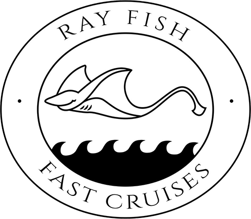 Ray Fish Fast Cruises to Nusa Penida